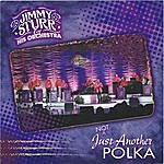 Jimmy Sturr & His Orchestra Not Just Another Polka