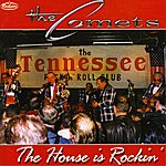 The Comets The House Is Rockin'