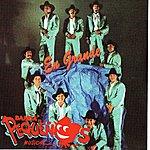Banda Pequeños Musical En Grande