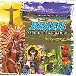 World Music Atelier Brazil Essential Of Brazilian Music