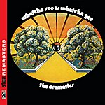 The Dramatics Whatcha See Is Whatcha Get [Stax Remasters]