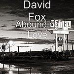 David Fox Abounding Love