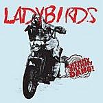 Ladybirds Shimmy Shimmy Dang!