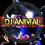 DJ Animal World Rhythms Of House & Dance