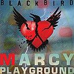 Marcy Playground Blackbird