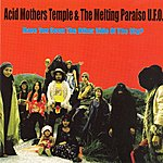 Acid Mothers Temple Have You Seen The Other Side Of The Sky?