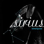 Lemongrass Sirius