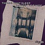 The Diggs Things That Sleep Things That Hide