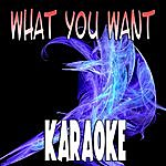 The Original What You Want (In The Style Of Evanescence) (Karaoke)