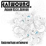Flatwound Again Kick Junior
