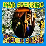 David Steinberg The Incredible Shrinking God