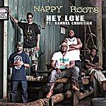 Nappy Roots Hey Love