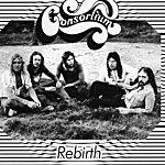 Consortium Rebirth
