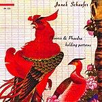 Janek Schaefer Phoenix & Phaedra Holding Patterns