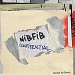 NBFB Nibfib Confidential