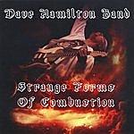 Dave Hamilton Strange Forms Of Combustion