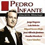 Pedro Infante Pedro Infante - Concierto Homenaje