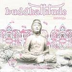 Riccardo Eberspacher Buddhattitude VII Svoboda
