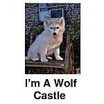 The Castle Trio I'm A Wolf