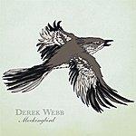 Derek Webb Mockingbird