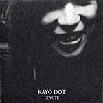 Kayo Dot Coyote