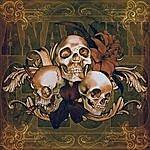 Anarchy Club Skulls