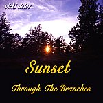 Vicki Delor Sunset Through The Branches