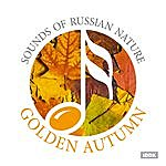 Nature Sounds Sounds Of Russian Nature. Golden Autumn