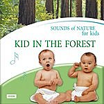 Nature Sounds Sounds Of Nature For Kids. Kid In The Forest