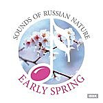 Nature Sounds Sounds Of Russian Nature. Early Spring