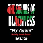 Sounds Of Blackness Fly Again - Single