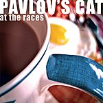 Pavlov's Cat At The Races