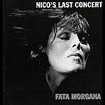 Nico Nico's Last Concert - Fata Morgana