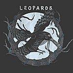 The Leopards Irony - Single