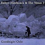 Robyn Hitchcock Goodnight Oslo