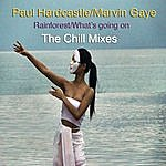 Paul Hardcastle Rainforest/What's Going On (The Chill Mixes)
