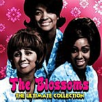 The Blossoms The Ultimate Collection
