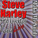 Steve Harley & Cockney Rebel Make Me Smile: Steve Harley Live