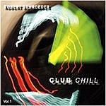 Robert Schroeder Club Chill, Vol.1