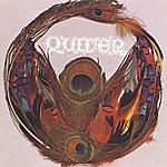 Quiver Quiver