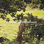 Freiband Transition - Single