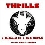 The Thrills A Badman In A Bad World