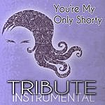 The Singles You're My Only Shorty (Demi Lovato Feat. Lyaz Tribute) - Single Instrumental