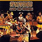 Amampondo Drums For Tomorrow