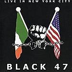 Black 47 Live In New York City
