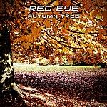 RedEye Autumn Tree