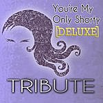 The Singles You're My Only Shorty (Demi Lovato Feat. Lyaz Tribute) - Deluxe Single