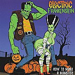 Electric Frankenstein How To Make A Monster