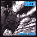 Miller Electric Buffalo