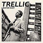 Baxter Dury Trellic